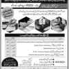 Free Technical Courses In Lahore 3 And 6 Months