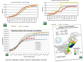 Cotton Production In Pakistan 2017 Sowing Time of Cotton Growing Areas