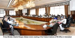 Govt to add 11,500 MW of electricity into system by June 2018