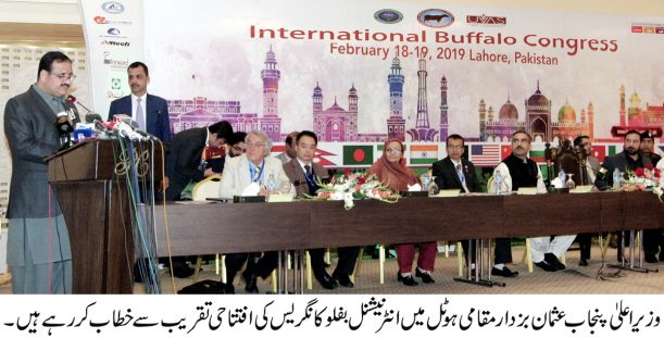 CM Punjab kicks off International  Buffalo Congress