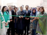 Lahore Arts Council held a pictorial exhibition on the theme of Pakistan Day