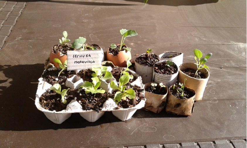 10 formas de hacer semilleros reciclados la huertina de toni for Materiales para un vivero