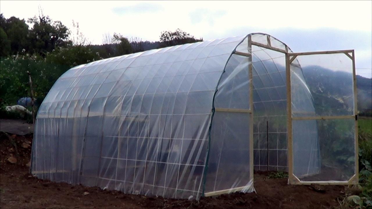 Como hacer un invernadero casero paso a paso la estructura for Como poner un vivero