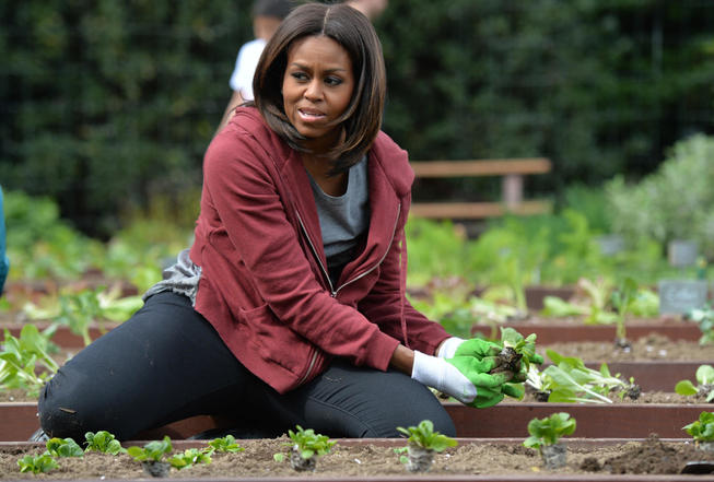 Famosos que cultivan sus verduras en casa