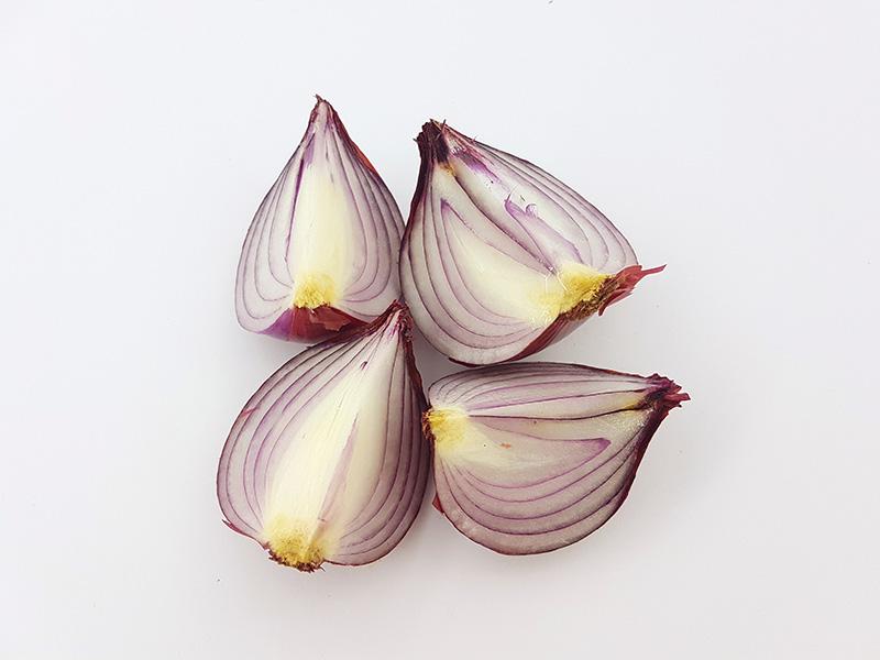 Cebollas, cultivo en huerto