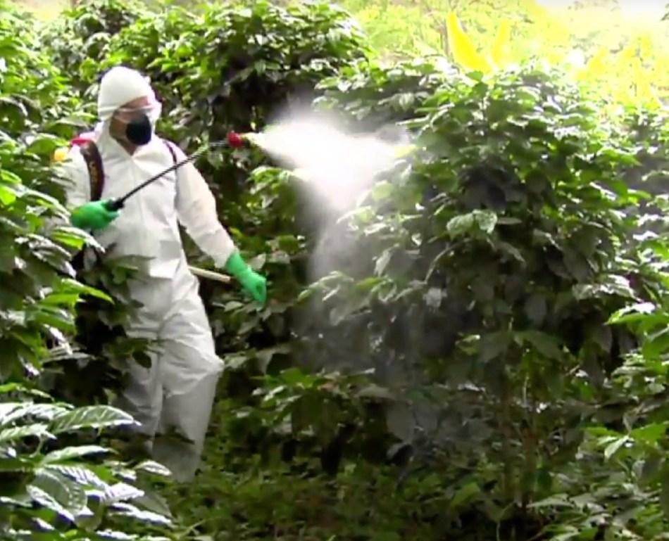 20180601A Sygenta Pesticidewise .jpg