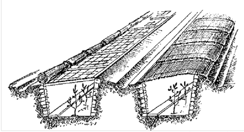 Drawing of two trenches protected for the winter.