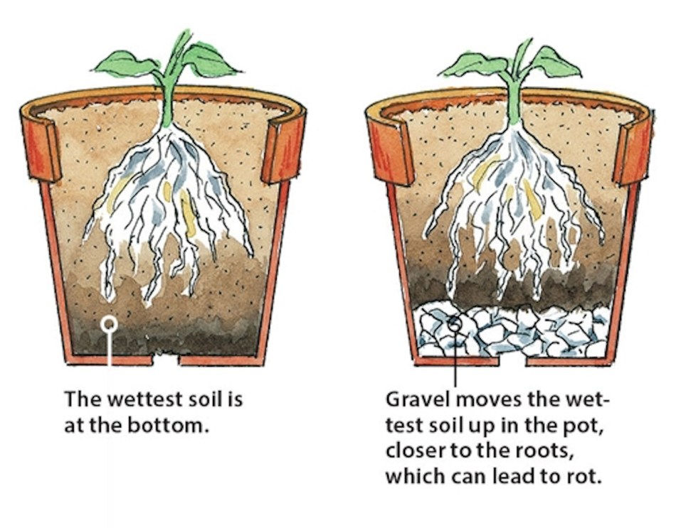 Illustration showing how adding a gravel drainage layer reduces root space and increases rot.