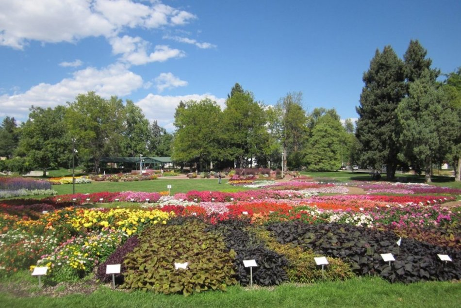 Trial garden with multiple splotches of colourful leaves and flowers.