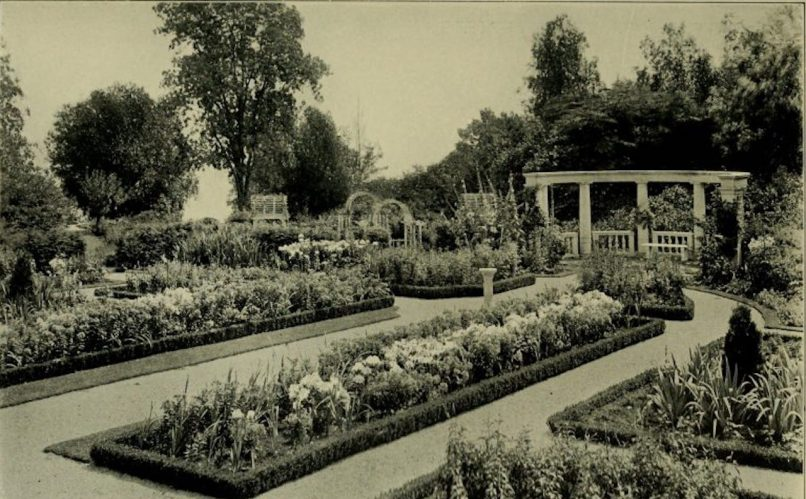Black and white photo of flower garden in the 1920s