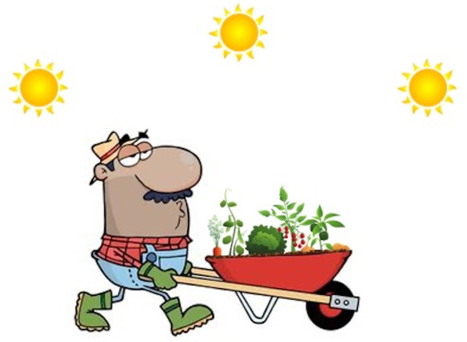 Man moving wheelbarrow with vegetables growing inside.