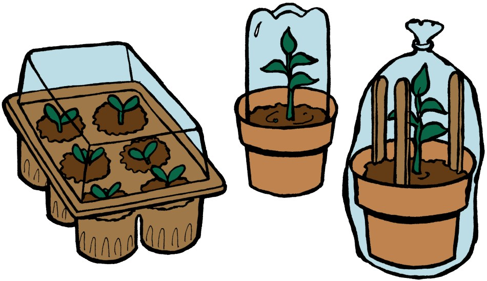 Illustration of different recycled domes and trays.