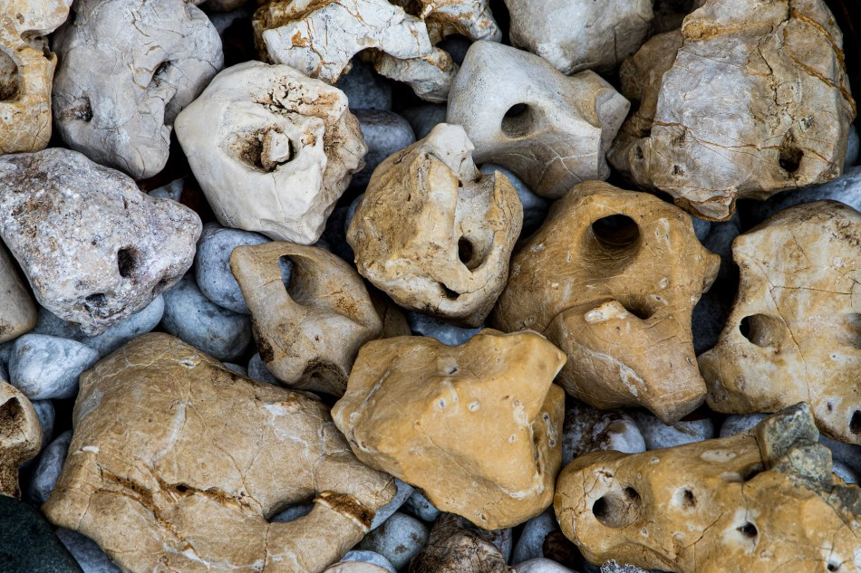 Interesting mixture of rocks.