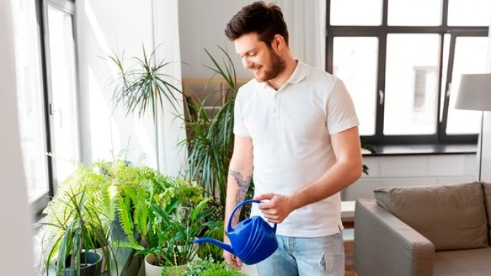 Man watering houseplants in room with white walls.