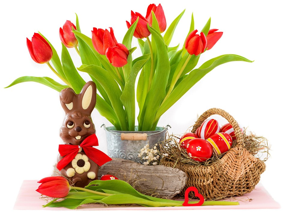 Red tulip, Easter eggs and chocolates