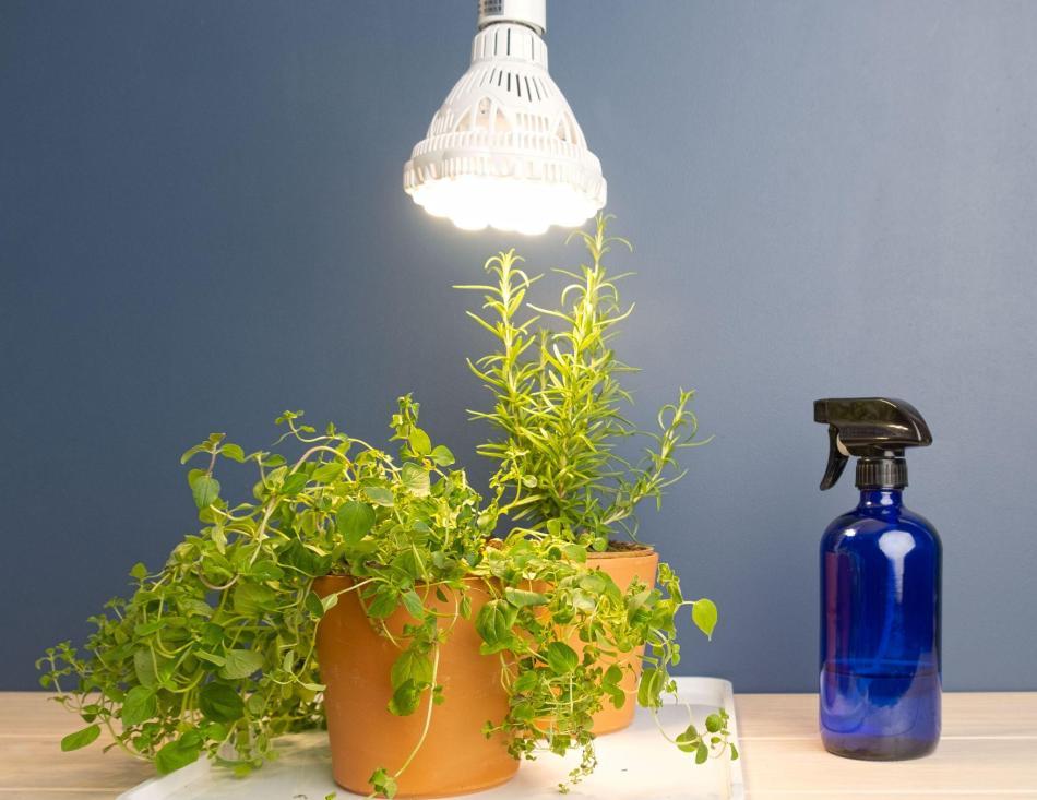 SANSI 36W grow light LED bulb