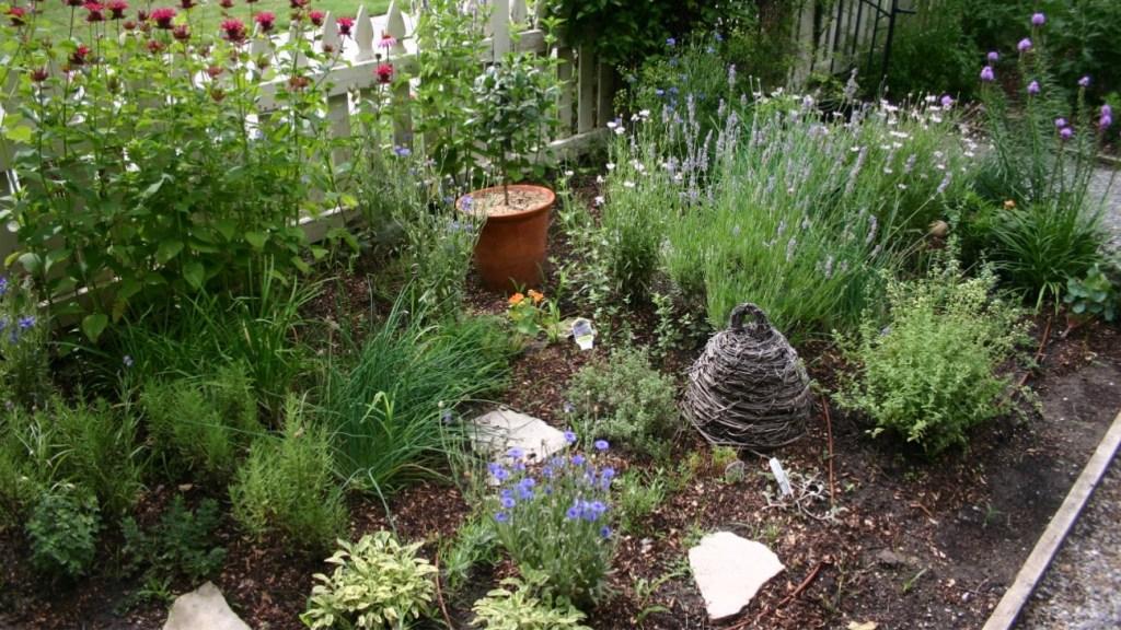 Herb garden outdoors