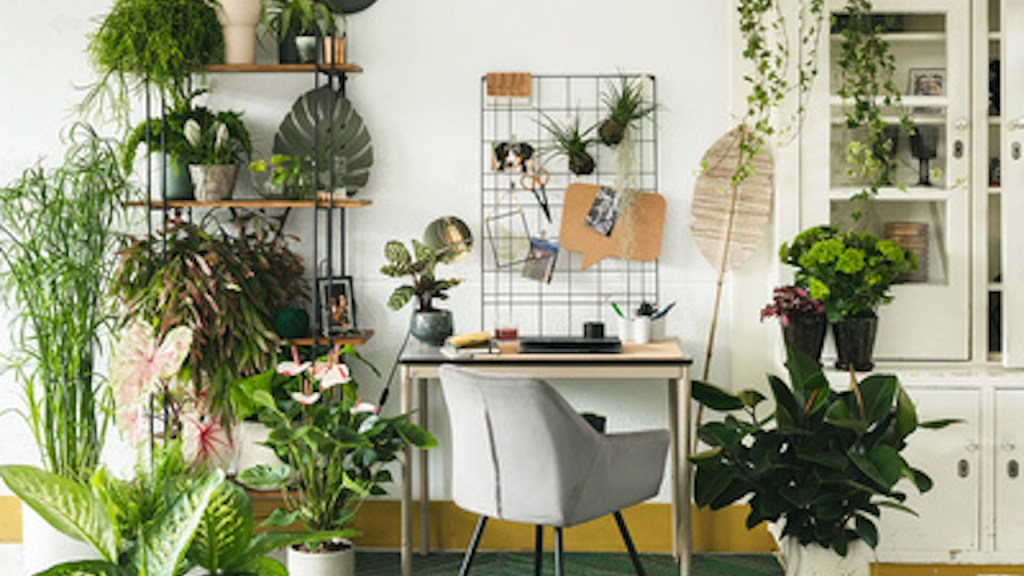 Home office with houseplants