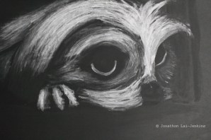 Chalk and Charcoal on Black card. 84.1 x 59.4cm