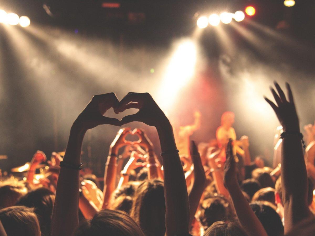 fans concierto multitud