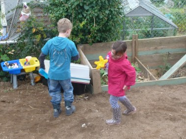 Year 3 at the allotment