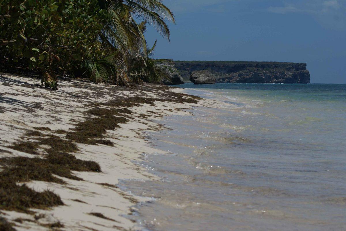 Isla de Mona 3741