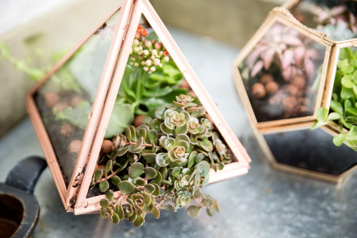 DIY \ un terrarium à suspendre