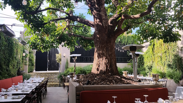 The 14 Most Beautiful Patios For Brunch In Los Angeles: LAist