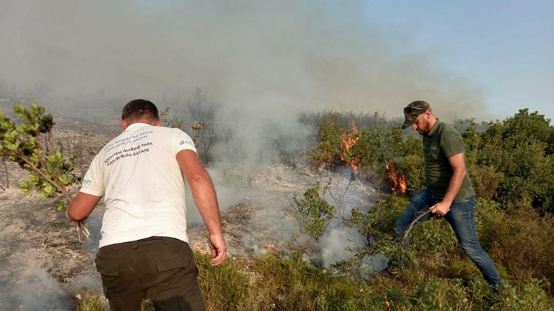 Situata kritike e zjarreve në Karaburun