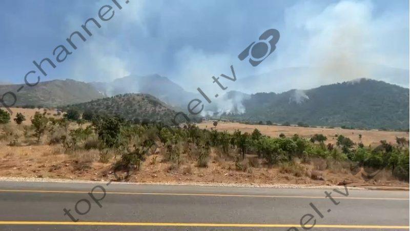 Luftë me zjarret në Vlorë/ Zjarrfikësit e kanë të vështirë ndërhyrjen