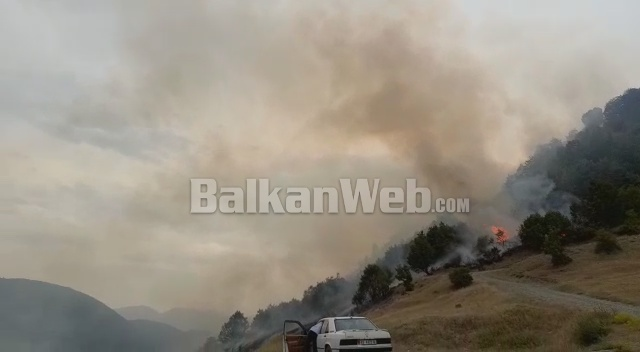 Foto/ Zjarr në Vithkuq
