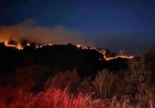 <br>Devasta incendio 500 hectáreas de territorio sagrado wixárika en SLP
