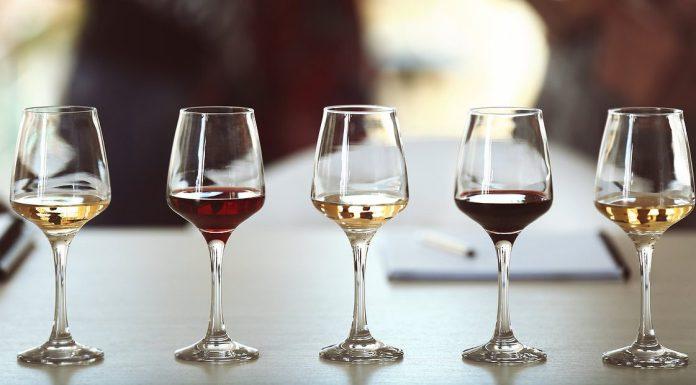 dégustation de vins, cover