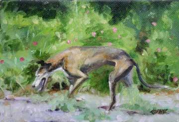 Grey Hound Painting