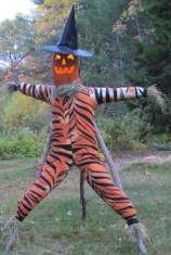 Wilmot Scarecrow Festival