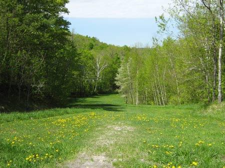 Riverwalk Field