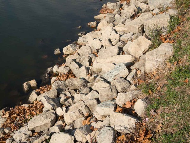 Pond Shoreline Riprap