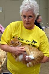 Animal Shelter Volunteers of Texas help with adoption events for the Conroe Animal Shelter.