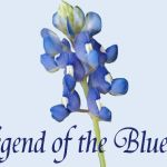 Legend of the Texas Bluebonnet