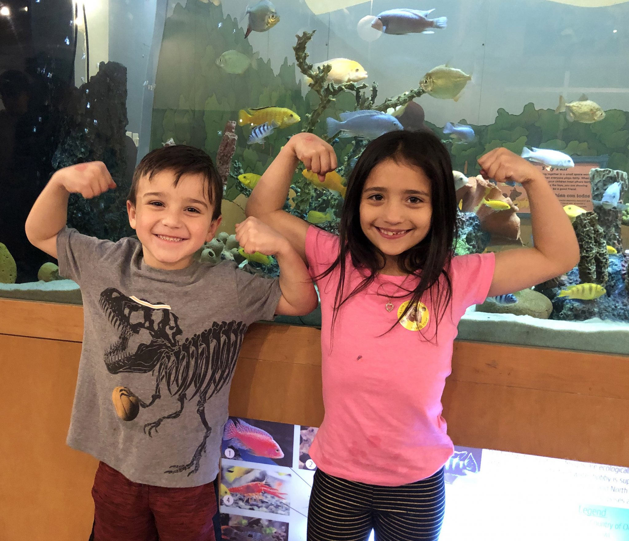 Fitness Frenzy at The Woodlands Children's Museum — Food samples, fitness demos, stuffed animal check-ups and more at annual event