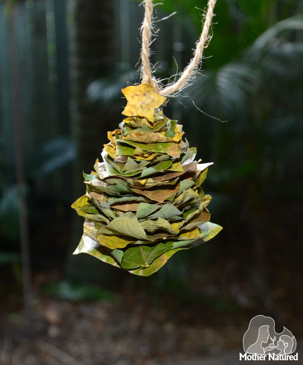 Nature Craft Workshop Holiday Ornaments Official