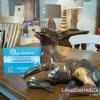 Go Herdwick lamb at LPC Furniture, Windermere