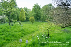The Pagan Grove at Holker Hall