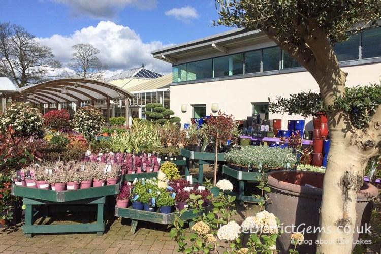 Beetham Nurseries