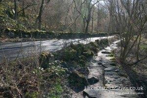 Path on the Derwentwater Walk