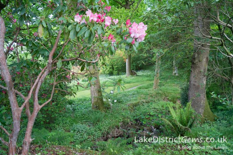 Stagshaw Gardens, Ambleside