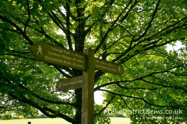 Walking signposts at Sizergh