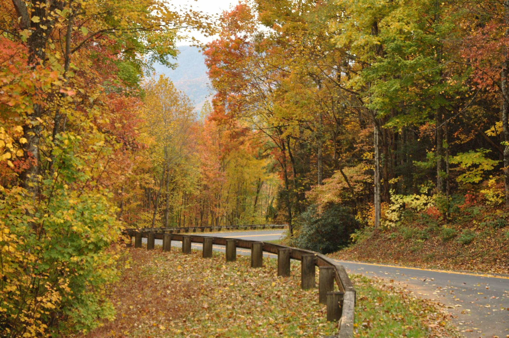 You won't want to miss the color change on the mountain trails.