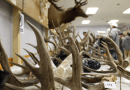 Winners racked in prizes at Big Buck Night