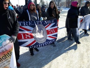 treaty flag